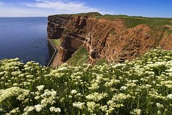 OSTROV HELGOLAND